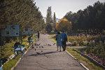 Горожане гуляют по парку. Архивное фото