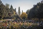 Бишкек шаарындагы Дайыр Асанов атындагы паркы. Архив