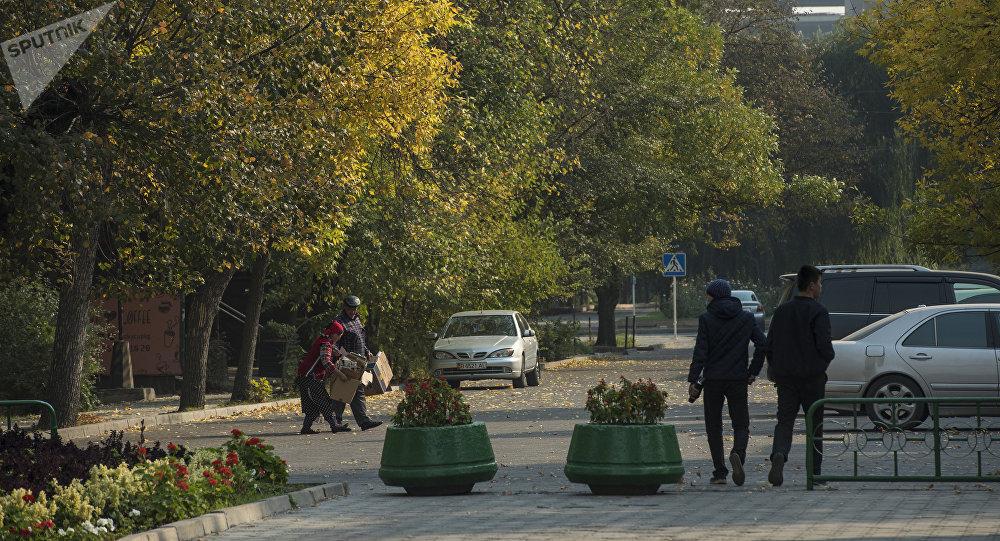 Молодые люди на одной из улиц Бишкека. Архивное фото