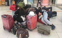 Түркияга иштегени барып алданып калган Кыргызстандын 46 жараны жардамга муктаж