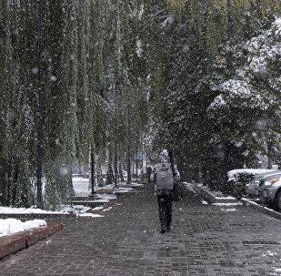 Мальчик с рюкзаком идет по улице во время осеннего снегопада. Архивное фото
