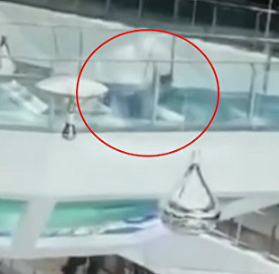 Женщина упала в бассейн с голодными акулами — видео