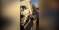 В Чуйской области лоб в лоб столкнулись КамАЗ и DAF — видео очевидца