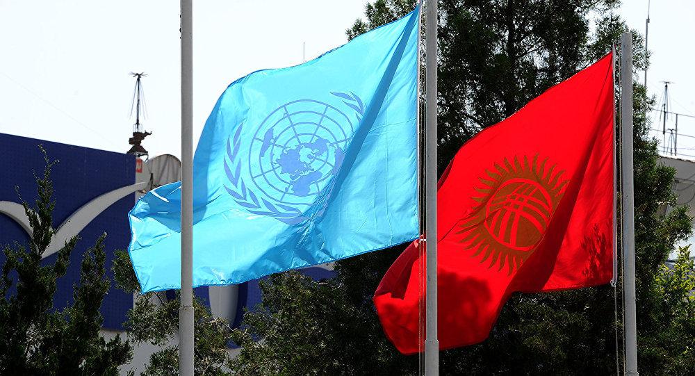 Флаги Организации Объединенных Наций и Кыргызстана. Архивное фото
