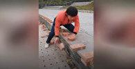 Китаец за 40 секунд рукой разбил 50 кирпичей. Видео
