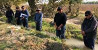 В Интернете опубликовано фото, на котором шестеро мужчин стоят по колено в арычной воде перед хлопковым полем