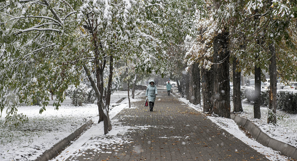 Снегопад в Бишкеке. Архивное фото