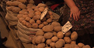 Почему в Кыргызстане картофель на рынках гораздо дороже, чем у фермеров