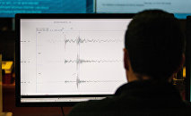 Показания сейсмографа на экране компьютера. Архивное фото