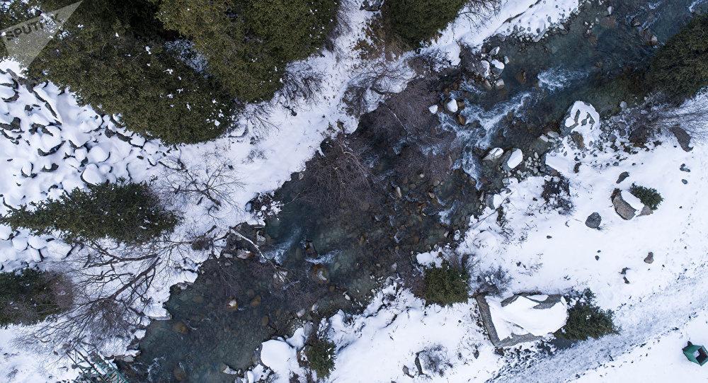 Ала-Арчадагы дарыя. Архивдик сүрөт