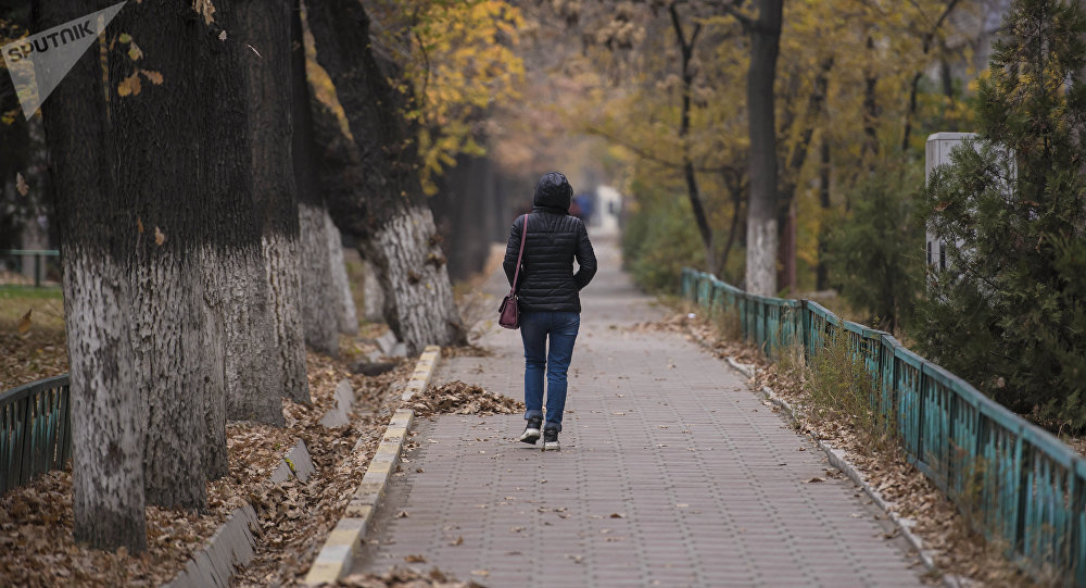 Девушка идет на одной из улиц Бишкека. Архивное фото
