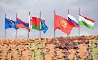 Государственные флаги стран-участниц командно-штабных учений ОДКБ. Архивное фото