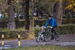 Бишкекчане выходят на прогулку в парк. Архивное фото