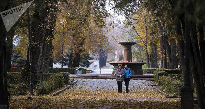 Один из старейших парков Бишкека Дубовый. Архивное фото