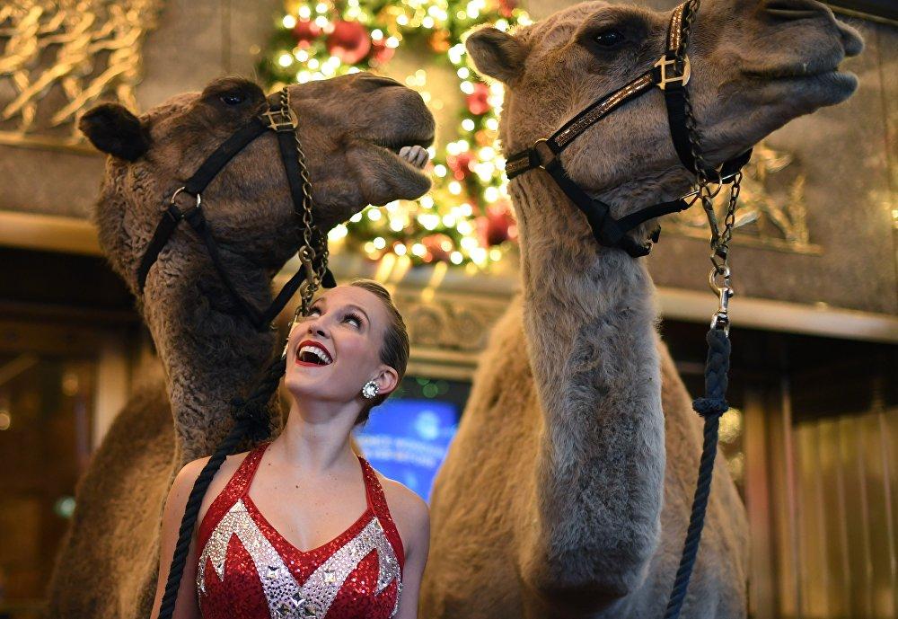 Нью-Йоркто Radio City Christmas Spectacular мюзиклинин катышуучусу