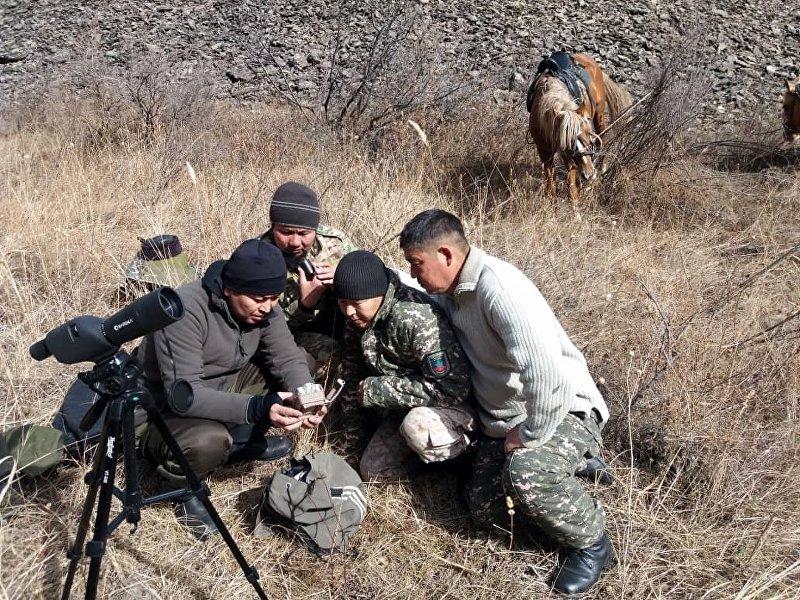 Установка новых фотоловушек на территории природного парка Кан-Ачуу в Тогуз-Тороуском районе.