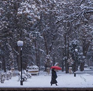 Женщина с зонтом идет по тротуару во время снегопада в Бишкеке. Архивное фото