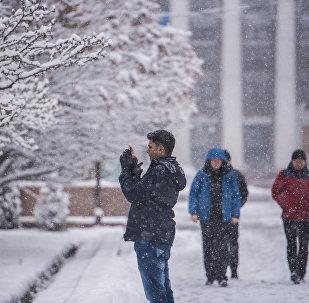 Парень фотографирует деревья во время снегопада в Бишкеке