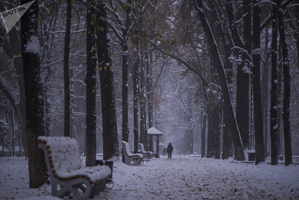 Снегопад в Бишкеке