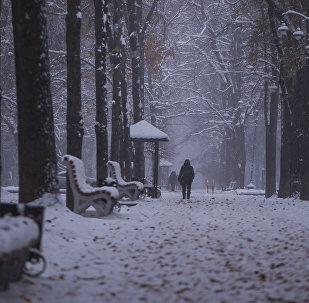 Бульвар Эркиндик во время снегопада в Бишкеке. Архивное фото