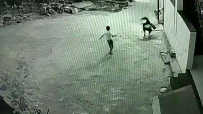 Подросток случайно спас друга, сорвавшегося с третьего этажа, — видео из Индии
