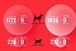 Какие животные могут напасть на вас в Бишкеке — статистика укусов