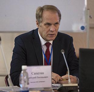 Директор компании Организация внедрения информационных и интеллектуальных технологий Дмитрий Сапегин на круглом столе