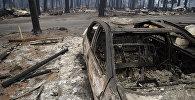 Последствия лесного пожара в городе Парадайз в штате Калифорния