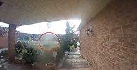 Канадада үйдүн алдында турган камера арбакты тартып алган. Видео
