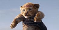 Скучали? Трейлер нового Короля Льва опубликовал Walt Disney