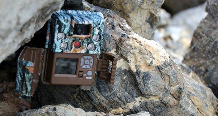 Жалал-Абад облусунун Токтогул районундагы Алатай жаратылыш паркына 10 фотокапкан коюлду