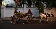 Конная повозка, используемая для свадебного шествия в Индии. Архивное фото