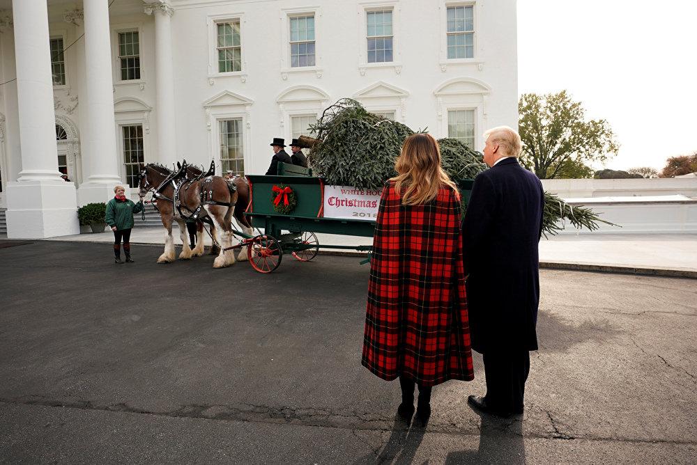 Встреча официальную рождественскую елку Белого дома в Вашингтоне
