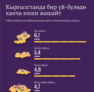 Кыргызстанда бир үй-бүлөдө канча киши жашайт