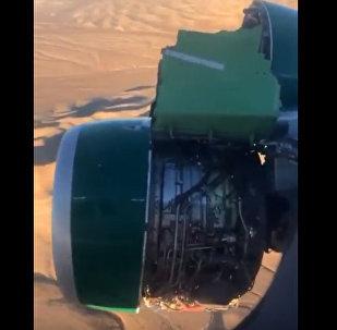 Обшивка двигателя самолета рассыпалась на глазах у пассажиров — видео