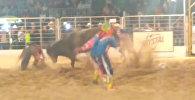 Бык подкинул ковбоя на несколько метров — видео из Бразилии