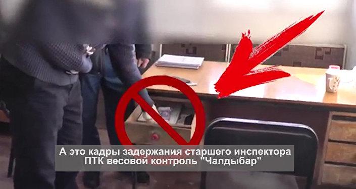 При получении взятки задержаны двое чиновников в Кыргызстане — видео