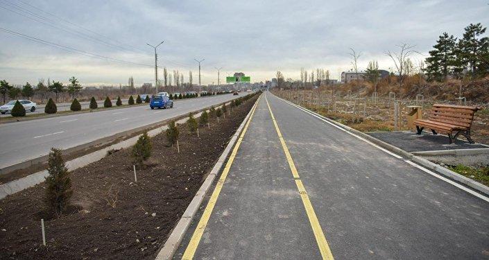 В Бишкеке завершено строительство велосипедной дорожки и пешеходной аллеи на Южной магистрали