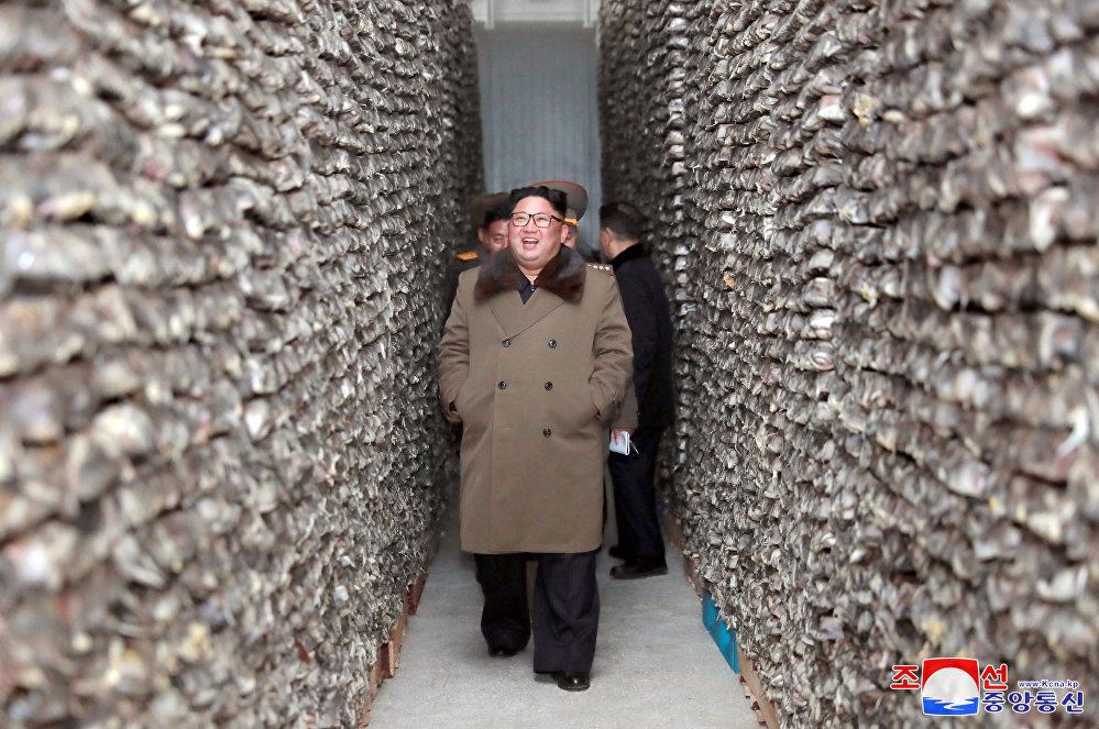 Түндүк Кореянын лидери Ким Чен Ын Дунхэ районундагы балык чарбасын көрдү