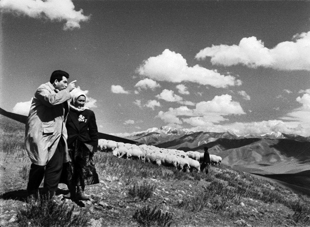 Жазуучунун чыгармаларынын негизинде кыргыз кино өнөрүндө бир топ шедевр тасмалар жаралган
