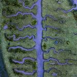 Соленое болото в Корунье (северная Испания)