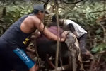 Битва людей с гигантским питоном попала на видео