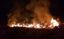 Пожар сухотравия на территории МП Зеленхоз в Бишкеке