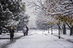 Люди идут по парку во время снегопада в Бишкеке. Архивное фото