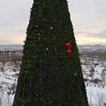57-метровая елка в Красноярске