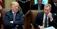 Заседание кабинета министров в Белом доме в Вашингтоне