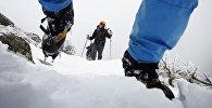 Альпинисты поднимаются в гору. Архивное фото