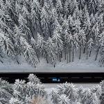 Дорога через лес в Рудных горах (Германия)