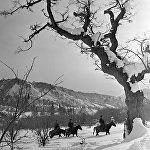 Лесники на лошадях объезжают места обитания зубров в Сары-Челекском заповеднике.