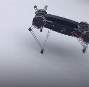 Бегут по льду, воде и под землей — новое поколение военных роботов. Видео